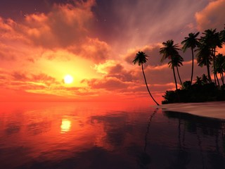 Beautiful sunset over the tropical beach with palm trees, sunrise over the island in the ocean