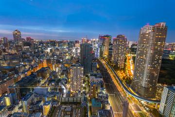 amazing view of tokyo skyline at sundown