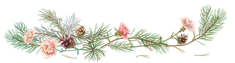 Horizontal border with pine branches, cones, white carnation schabaud on white background, hand digital draw, watercolor style, decorative botanical illustration for design, Christmas tree, vector