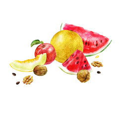 Watercolor illustration. Image of fruits and nuts. Watermelon, melon, apple, nuts.