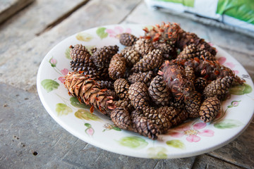 horizontal image with plate detail with tree pine cones used as decoration