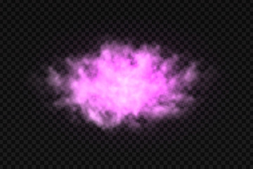 Vector realistic isolated colorful purple smoke for decoration and covering on the transparent background.