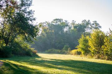 Field Green View