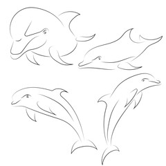 Black line dolphin on white background. Hand drawn vector dolphins set.