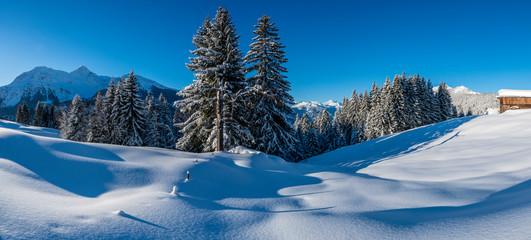 Winter in den Aelpen