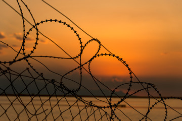 Barbed wires on sunset.