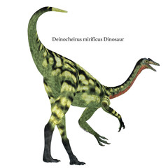 Deinocheirus Dinosaur Tail with Font
