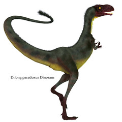 Dilong Dinosaur Tail with Font