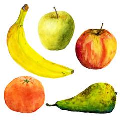Watercolor fruits. Illustration on white background. Banana, apples, pear, mandarin.