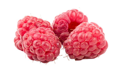 Raspberry berry on white background