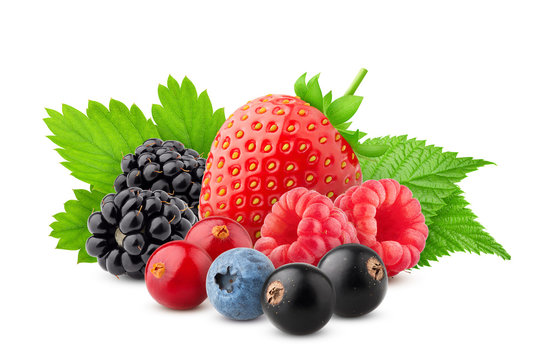 wild berries mix, strawberry, raspberry, currant, blueberry, cranberry, blackberry,, blackberries isolated on white background, clipping path, full depth of field