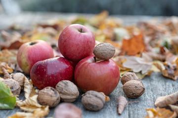 Äpfel mit Walnüssen liegen auf eine Tisch mit Pattina umgeben mit buntem Laub und Lavendel
