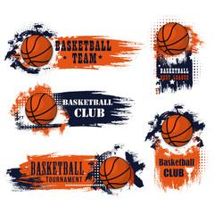 Basketball team club vector ball icons
