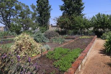 Kyalami garden