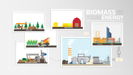 biomass energy, how to produce biomass, biomass power plant generate the electricity