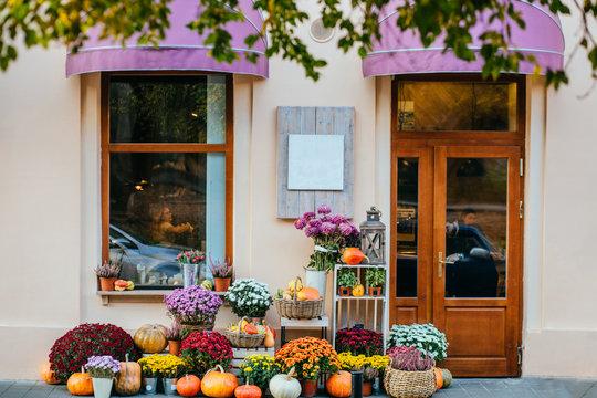 Storefront of cozy flower shop with flowers, pots, pumpkins beautiful autumn decor.