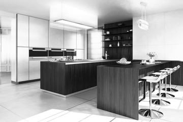 Contemporary Designed Kitchen (B&W)