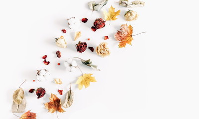 Autumn creative composition. Frame made of dried autumn leaves, dried roses,cotton flowers on white background. Autumn, fall modern concept. Flat lay, top view, copy space