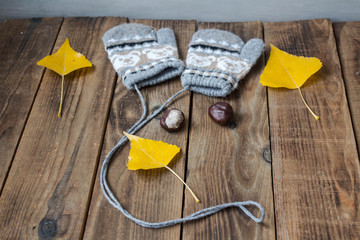 a mittens yellow leaves chestnut on wooden background