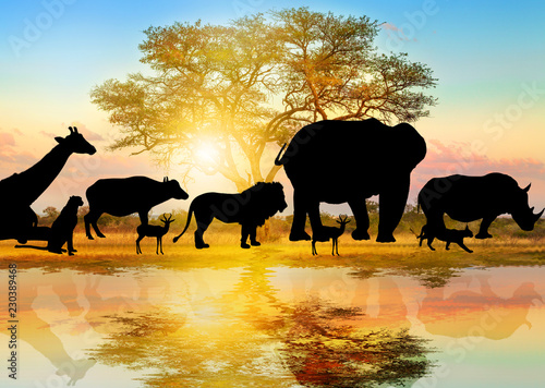 Silhouette Of Wild Animals Lined On African Acacia Tree