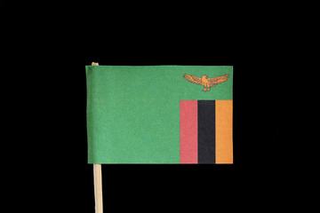 A official, national flag of Zambia on toothpick on black background. Zambia has flag contain eagle and tricolour on green field.