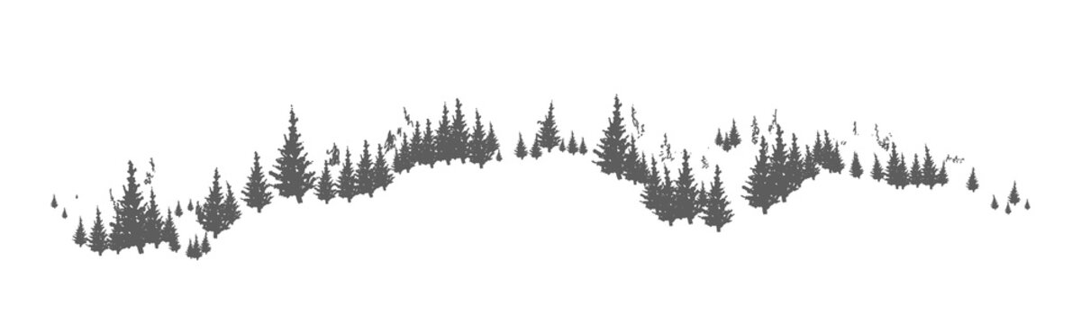 Horizon line with hand drawn silhouettes of coniferous trees growing on hills or mountains. Forest panorama with pines or spruces. Natural monochrome decorative element. Vector illustration.