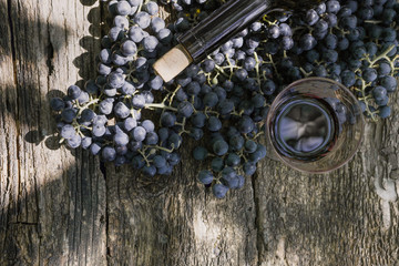 black grapes on wooden background