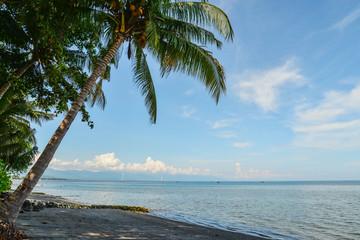 Beautiful tropical seascape