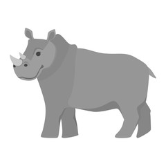 Rhino animal from the Africa. African wildlife