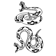 Set of rattlesnakes. Hand drawn lineart vector illustration. Can be used for posters, prints and others craft.