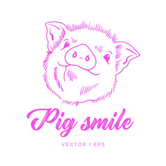 Hand drawn vector pig cute face. Piglet outline simple drawing.
