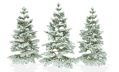 Christmas Trees covered with snow isolated on a white background. 3D Illustration