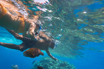 Woman at snorkeling in Red Sea, Egypt
