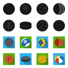 Vector illustration of sport and ball icon. Set of sport and athletic stock symbol for web.