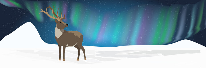 A wild reindeer stands in a snowy northern valley and looks at the northern lights in the night sky. Realistic Animals USA, Canada, Russia and Scandinavia. Vector landscape