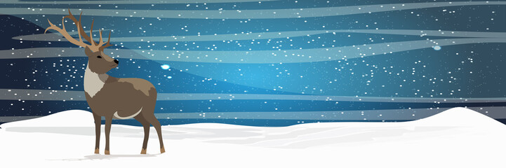 A wild reindeer stands alone on a snowy northern plain. Winter starry night. Animals of the North, Canada, United States, Russia and Scandinavia. Realistic Vector Landscape