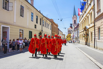 Ceremonial Changing of the Guard in Zagreb, Croatia Wall mural