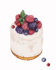 watercolor hand drawn cheese cake with raspberry, blueberry, blackberry, currant on white background
