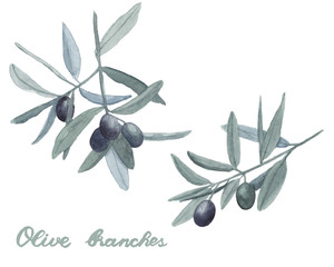 Watercolor hand drawn set with olive branch with leaves and fruits, isolated on a white background and lettering