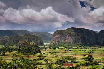 Mogotes en forme de dôme dans la Vallée de Viñales à Cuba