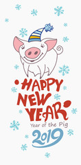 Cute greeting card with a pretty pig. Happy New Year 2019. Christmas decor blue snowflakes. Vector New Year's design.