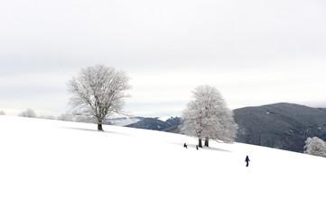 Verschneite Landschaft in der sich einige Wintersportler tummeln
