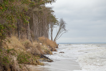 Ostseeküste bei Graal-Müritz, Deutschland