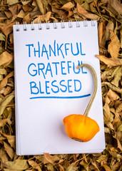 thankful, grateful, blessed  spiritual words