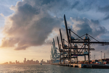 Cranes of the port of Miami and skyline of downtown Miami at sunset, in Florida, USA Wall mural