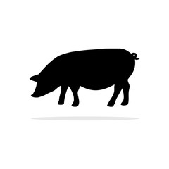 Pig icon. Vector concept illustration for design.