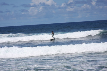 Barbados Surfer