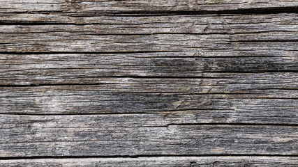 Aged wood surface texture
