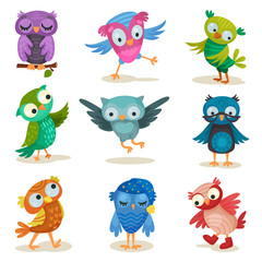Cute colorful owlets set, sweet owl birds cartoon characters vector Illustrations on a white background