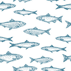 Hand Drawn Fish Vector Seamless Background Pattern. Anchovy, Herrings, and Salmons Sketches Card or Cover Template in Blue Color.